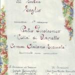 Attestato Palio pirotecnico 1994